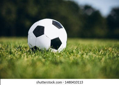 Football ball at the field alone isolated