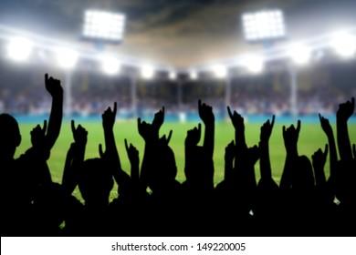 football fans cheering in the soccer stadium