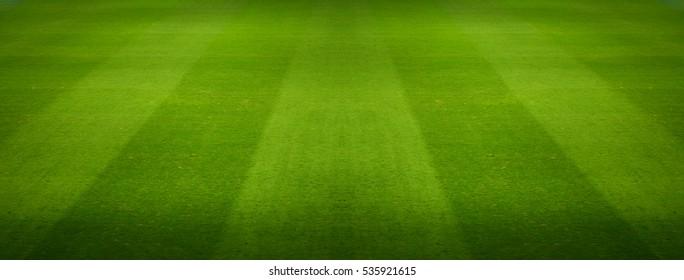 football field, soccer field