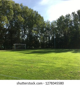 football field, football, soccer, green field in summer with trees in background