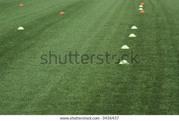 "Football field of ""Spartak"" stadium, Novosibirsk, may 2007"