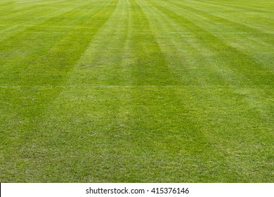 Football grass field texture surface natural color use for background
