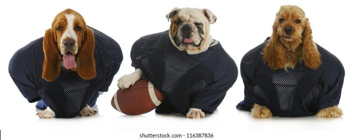 football team -