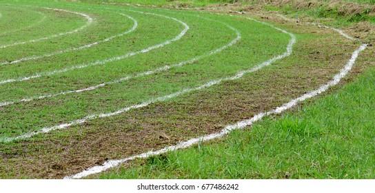 football white lines running on track
