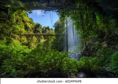 Footbridge and Crystal Falls along the Wonga Walk in the Rainforest of Dorrigo National Park,New South Wales, Australia. Long exposure.