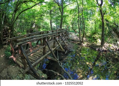Footbridge in forest. Strandzha nature park in Bulgaria