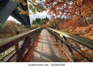A footbridge going over Loch Faskally in Perthshire with the colour of Autumn in full bloom