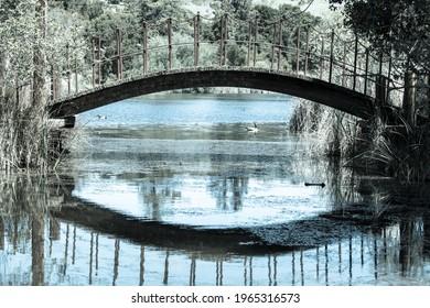 Footbridge over Boronda Lake at Palo Alto Foothills Park. Santa Clara County, California, USA