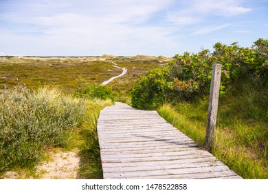 Footbridge path over the dunes of Amrum