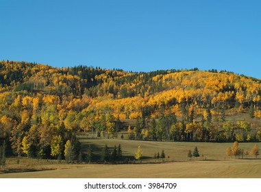 Foothills of Alberta showing fall colors.