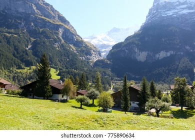 At the foothills of rocky mountains there are meadows, woodland and trees and several houses as seen from Grindelwald