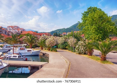 Footpath to blossoming park in  Mediterranean town of Tivat. Montenegro
