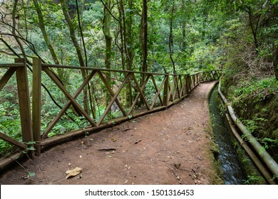 Footpath and canal through the rain forest canyon of Los Tilos in La Palma, Spain.