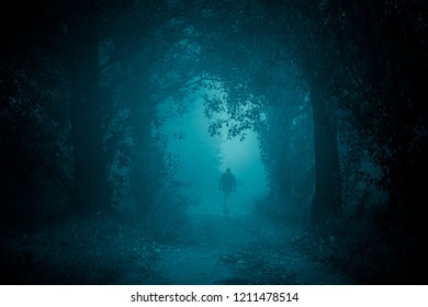 Footpath in the dark, foggy, mysterious forest. Silhouette of walking away man.