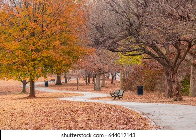 Footpath, a lot of dry leaves and bare trees in autumn Piedmont Park, Atlanta, USA
