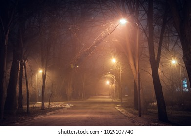Footpath in a fabulous winter city park at night in fog. Beautiful foggy evening in the park. Kiev, Ukraine.