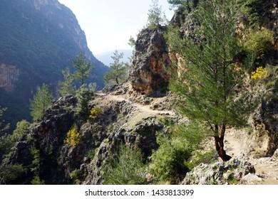 Footpath on the slope in Kadisha valley