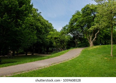 footpath in a park with green vegetation.   Swiss city Basel in the summer. Europe.