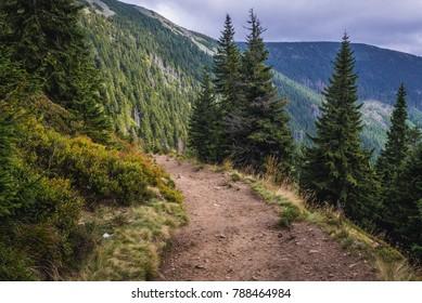 Footpath from Pec pod Snezkou town in Czech Republic to the peak of Snezka Mountain