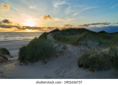 footpath in the sand on a dune at the north sea coast in Vejers Strand (Denmark) in front of scenic sunset