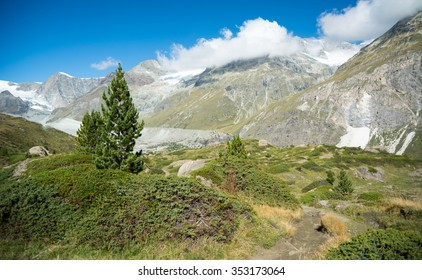 Footpath in the swiss Alps, Zermatt