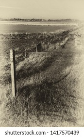 Footpath through fields along the Ore Estuary, Orford Suffolk UK. Grainy antique vintage sepia effect.