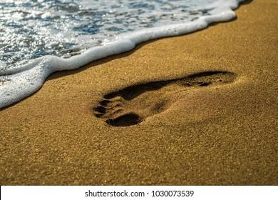 footprint on the sea beach