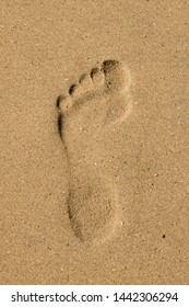 Footprint in the sand. Image of footprint in the sand of the beach.