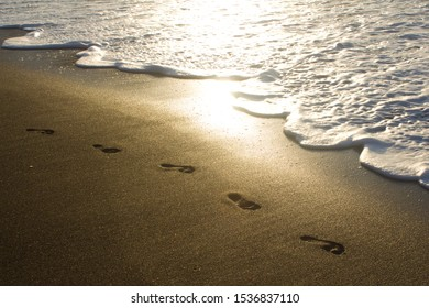 Footprints by the Sea - Steps on the Beach