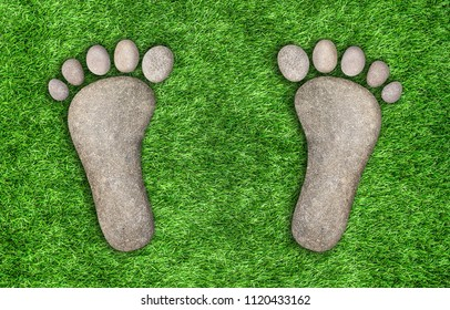 Footprints in the grass