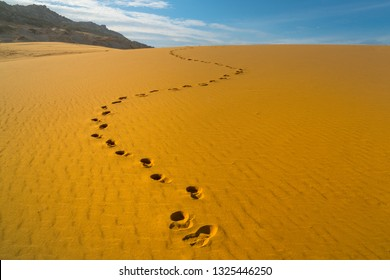 Footprints of human feet on the desert golden color sand