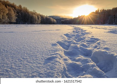 Footprints lead towards the setting sun across a snow covered frozen lake surrounded by frost covered trees at sunset. Winter landscape for sports.