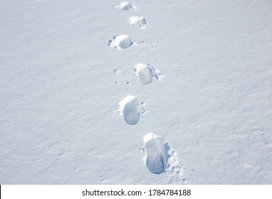 footprints of a man on white snow