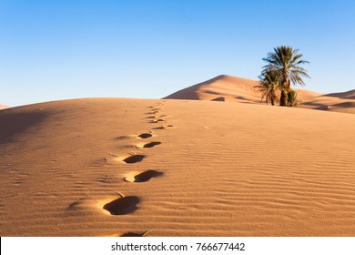 footprints in the middle of the desert and sand dunes