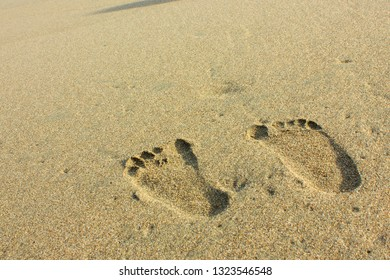 tapak kaki images stock photos vectors shutterstock https www shutterstock com image photo footprints on beach sand 1323546548