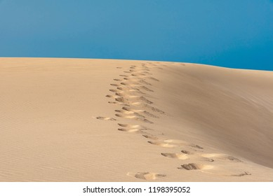 footprints on the sand dune in the sand desert of the island of Fuerteventura in Spain