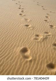 footprints on sand texture background