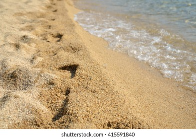 Footprints on sandy beach by the sea