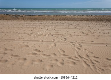 Footprints on the sandy beach with surfer on the horizon, Bibione, Veneto, Italy