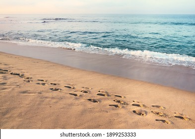 Footprints on a sandy tropical beach at sunset, color toning applied.