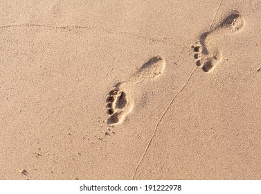 Footprints on the tropical beach.
