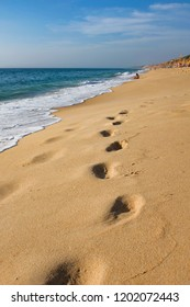 Footprints on wet sand by the seashore in a sunny summer day