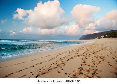 Footprints in the sand along Polihale Beach in Kauai, Hawaii leading to the Napali Coast