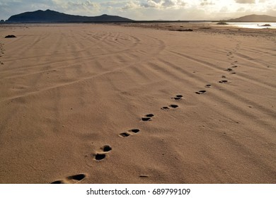 Footprints in the sand. Cape Isle Fake. Primorye. Russia.