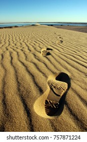 Footprints in sand - Desert