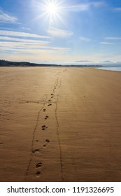 Footprints in the sand on deserted Newborough beach, Anglesey, Wales, United Kingdom