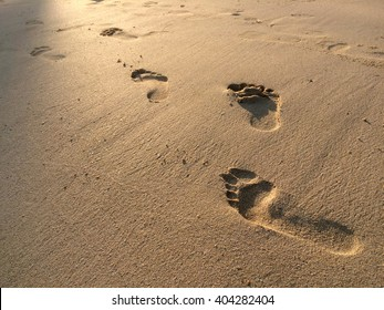 Footprints in the sand at sunset