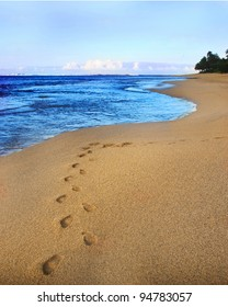 Footprints are seen in the sand of a deserted beach, with a beautiful blue sky, ocean, and tropical foliage in the background.  Copy space.