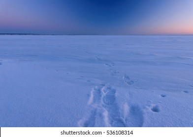 Footprints in snow at cold winter evening. Frozen river Volga