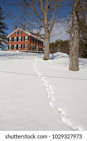 Footprints through the snow leading up to an old New England brick house in Farlee, Vermont.